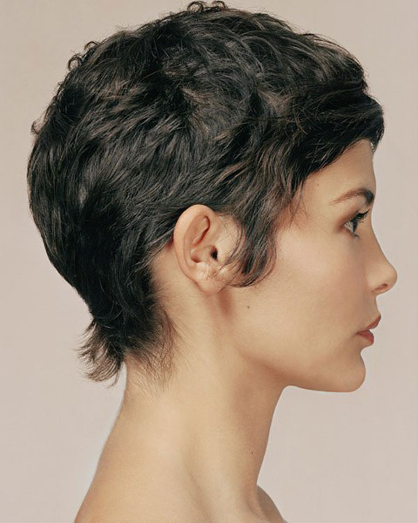 Groovy Cute Crazy Hairstyles Short Hair With Colour Allthatjazzdance Us Short Hairstyles For Black Women Fulllsitofus